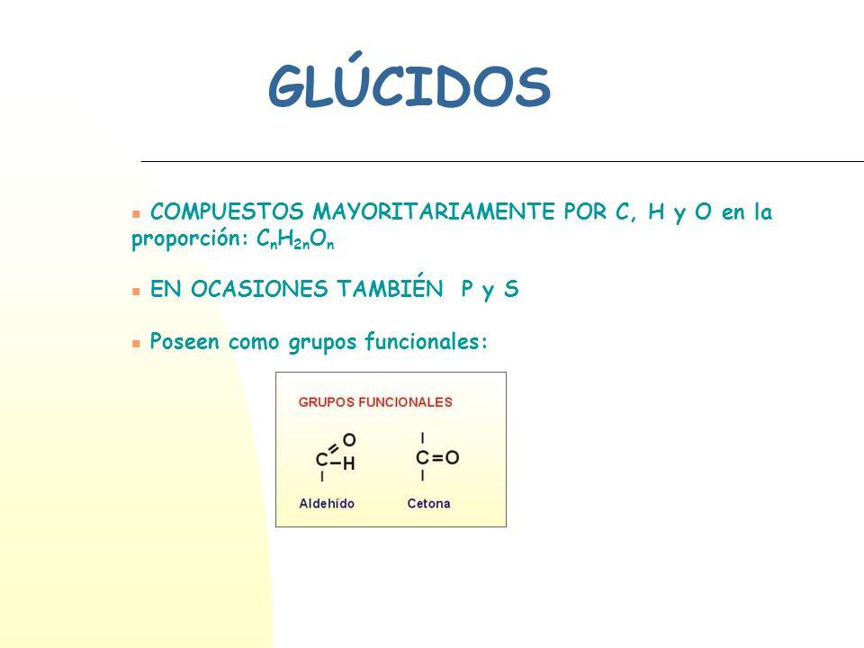 GLÚCIDOS COMPUESTOS MAYORITARIAMENTE POR C, H y O en la