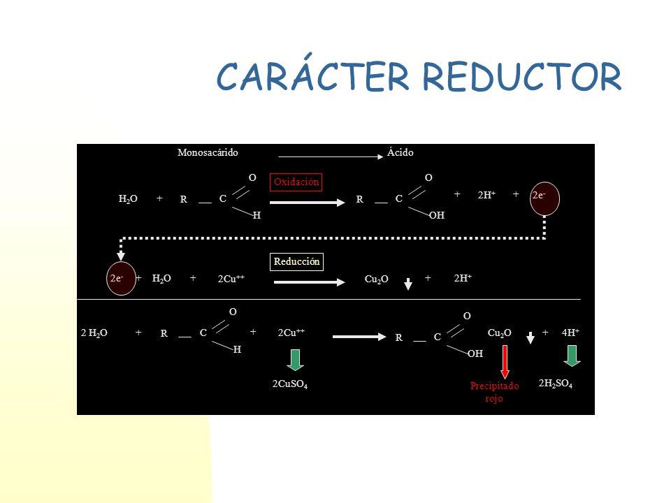 CARÁCTER REDUCTOR R C H O OH H2O 2H+ 2e- + 2Cu++ Cu2O 2 H2O 4H+ 2CuSO4