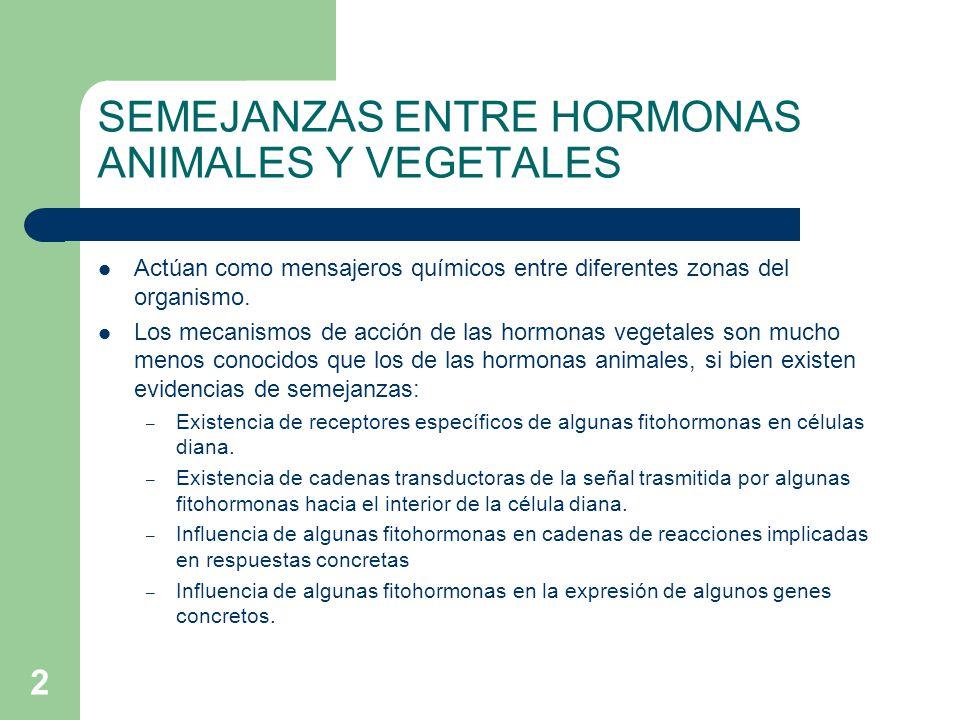 SEMEJANZAS ENTRE HORMONAS ANIMALES Y VEGETALES
