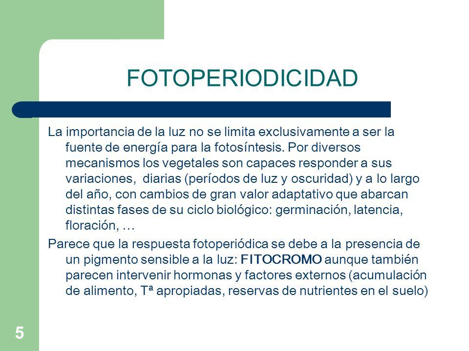 FOTOPERIODICIDAD