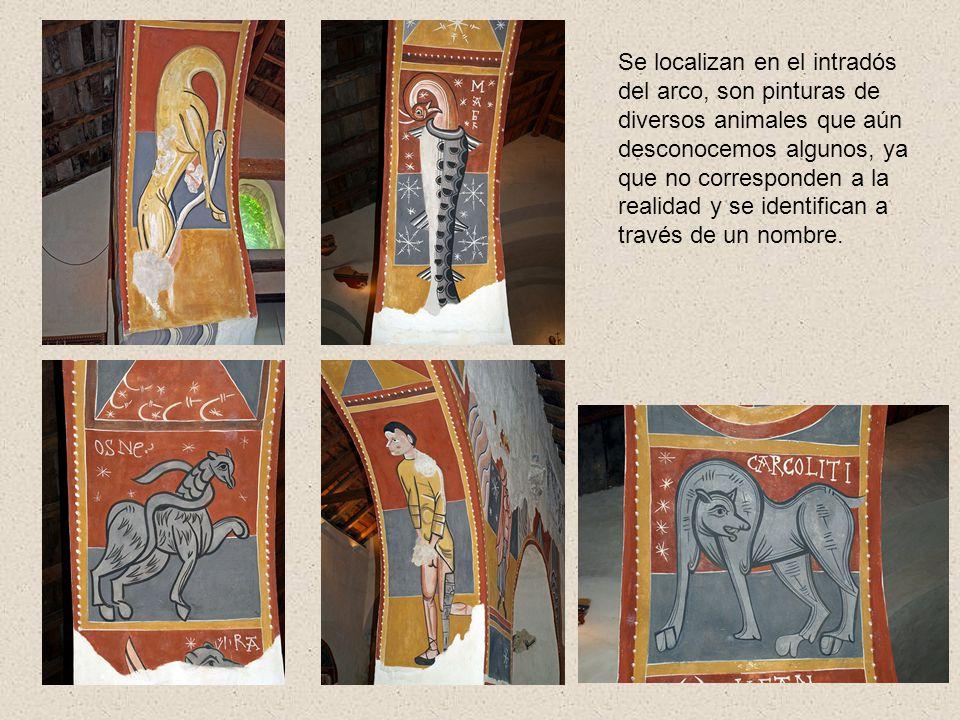 Se localizan en el intradós del arco, son pinturas de diversos animales que aún desconocemos algunos, ya que no corresponden a la realidad y se identifican a través de un nombre.