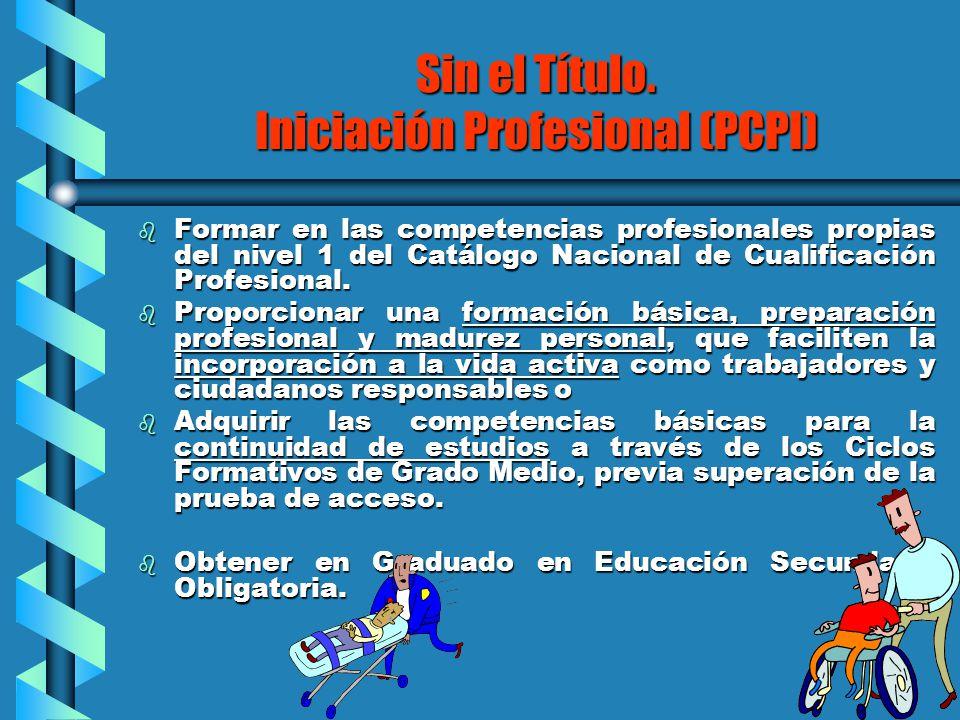 Sin el Título. Iniciación Profesional (PCPI)