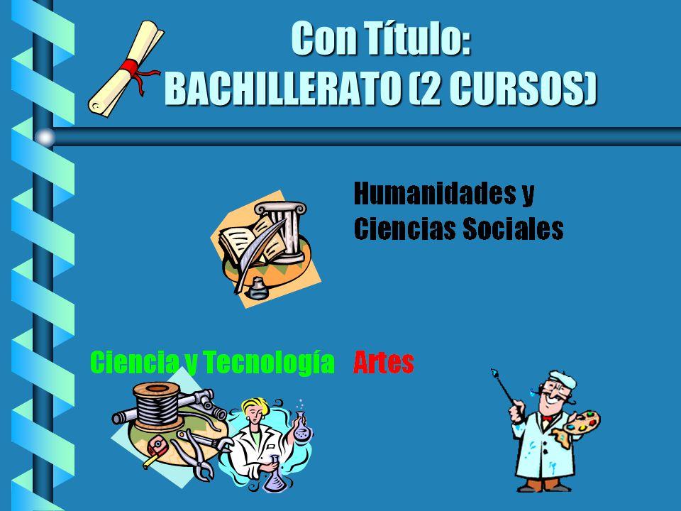 Con Título: BACHILLERATO (2 CURSOS)