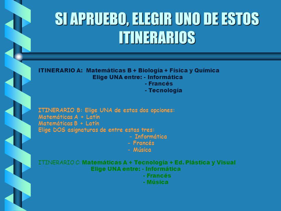 SI APRUEBO, ELEGIR UNO DE ESTOS ITINERARIOS