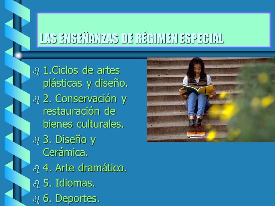 LAS ENSEÑANZAS DE RÉGIMEN ESPECIAL