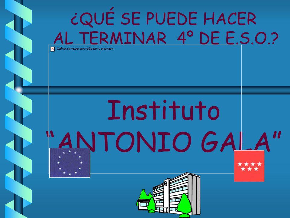 ¿QUÉ SE PUEDE HACER AL TERMINAR 4º DE E.S.O. Instituto ANTONIO GALA