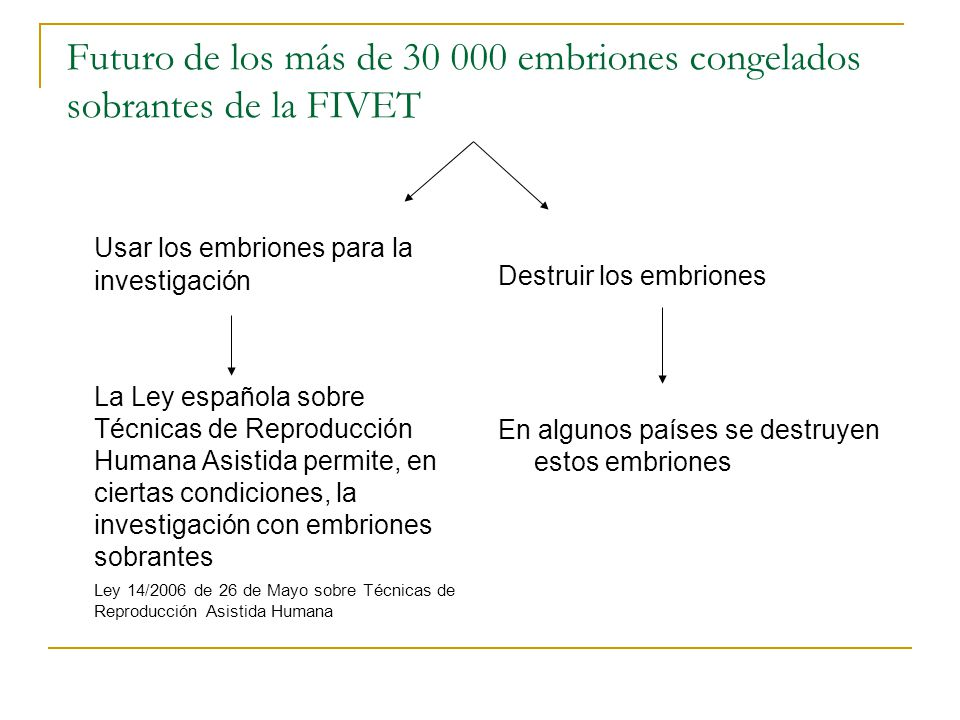 Futuro de los más de 30 000 embriones congelados sobrantes de la FIVET