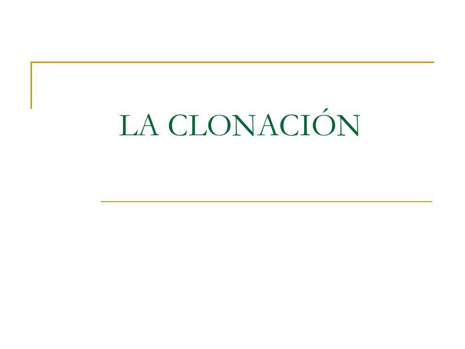LA CLONACIÓN