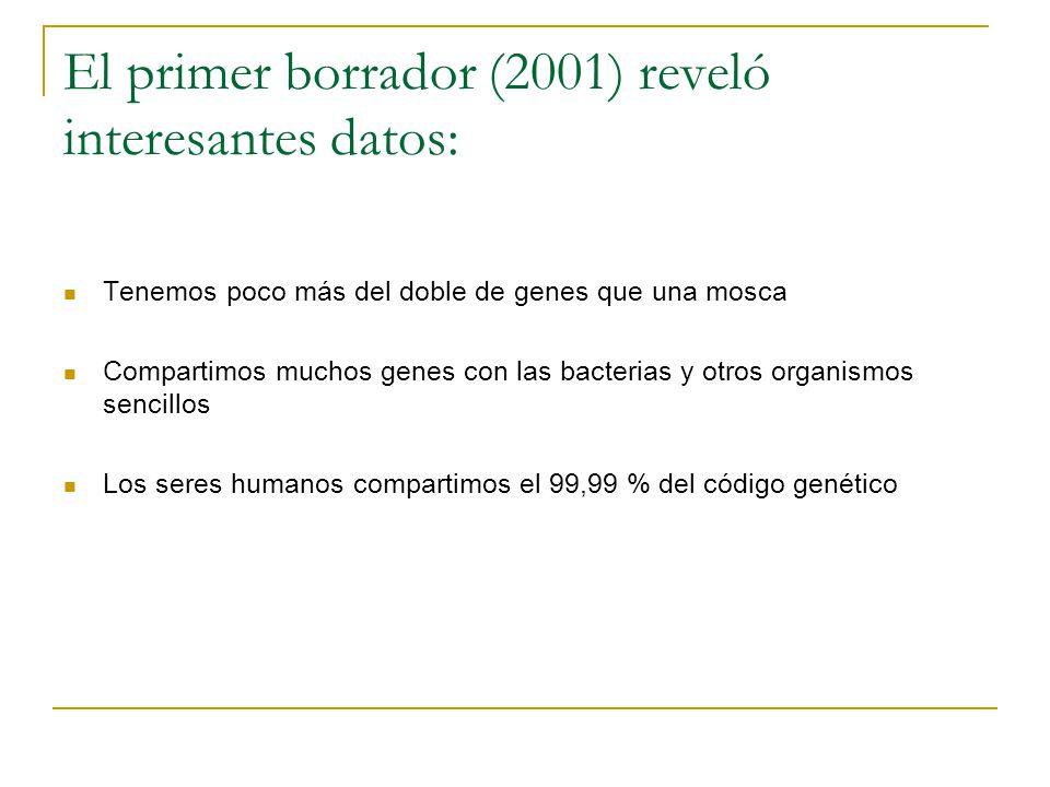 El primer borrador (2001) reveló interesantes datos: