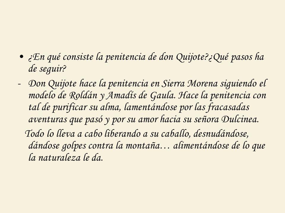 ¿En qué consiste la penitencia de don Quijote ¿Qué pasos ha de seguir