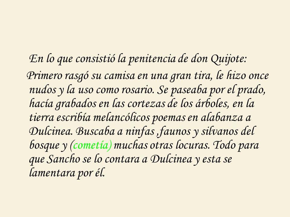 En lo que consistió la penitencia de don Quijote: