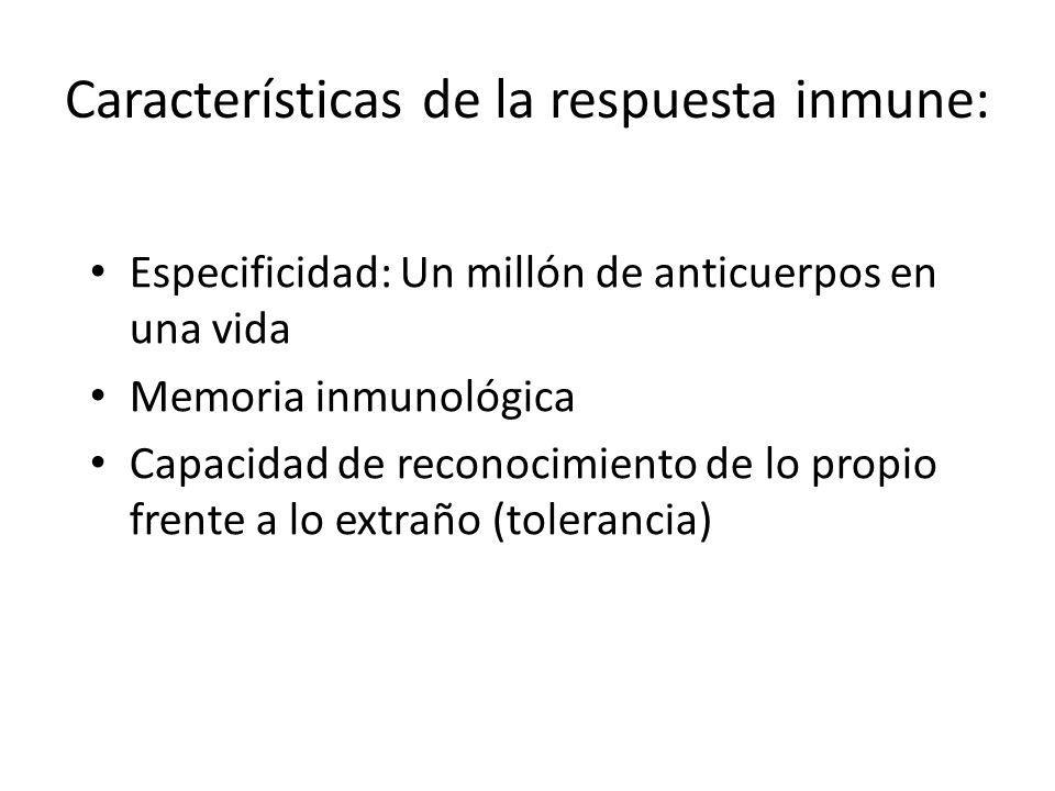 Características de la respuesta inmune: