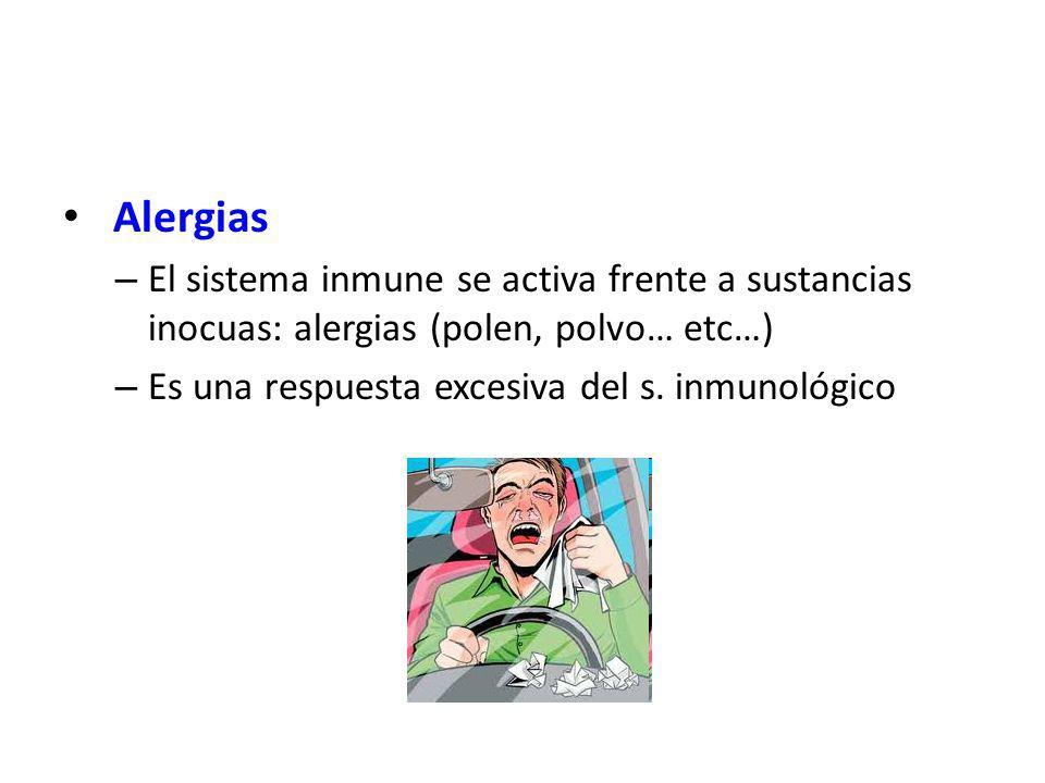 Alergias El sistema inmune se activa frente a sustancias inocuas: alergias (polen, polvo… etc…) Es una respuesta excesiva del s.