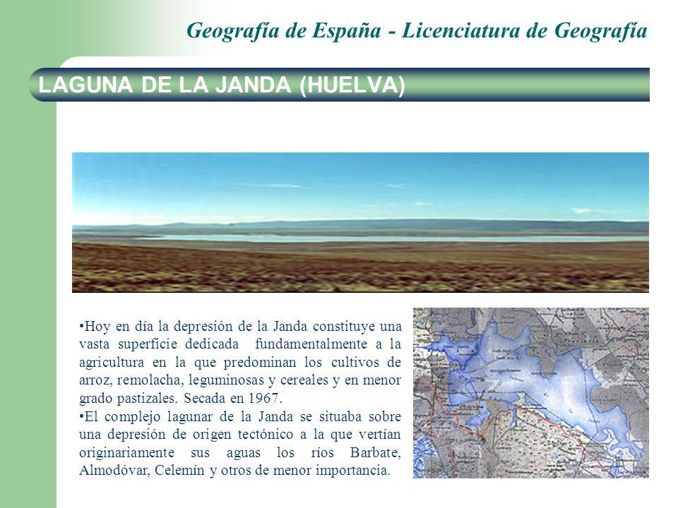 LAGUNA DE LA JANDA (HUELVA)