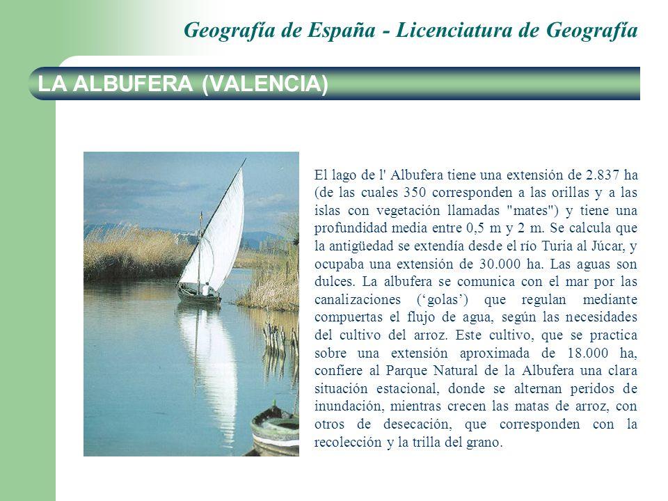 LA ALBUFERA (VALENCIA)