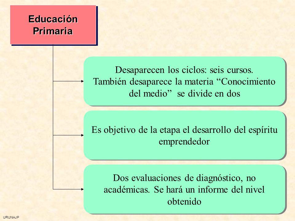 Desaparecen los ciclos: seis cursos.
