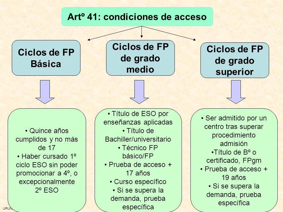 Artº 41: condiciones de acceso