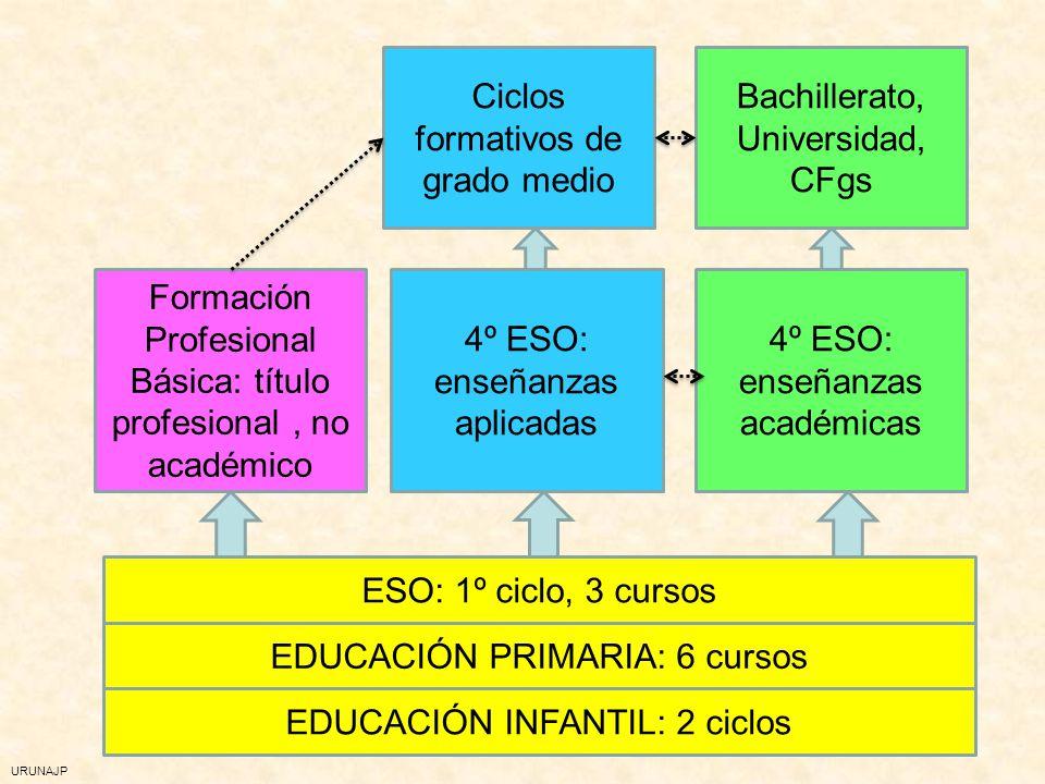 Ciclos formativos de grado medio Bachillerato, Universidad, CFgs