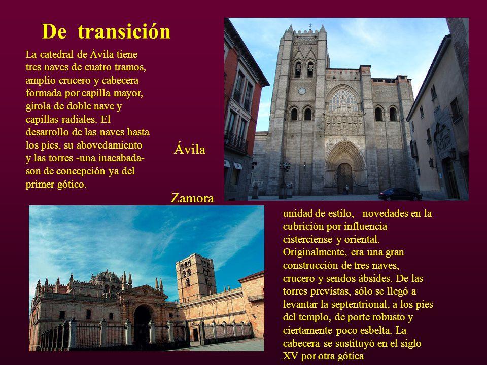 De transición Ávila Zamora