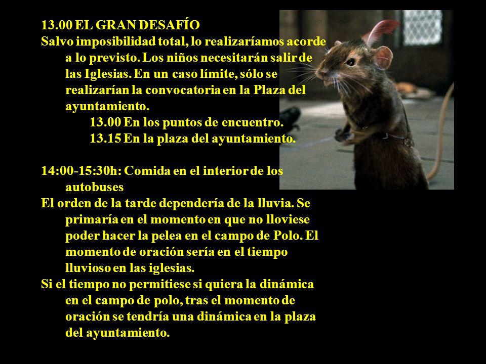 13.00 EL GRAN DESAFÍO