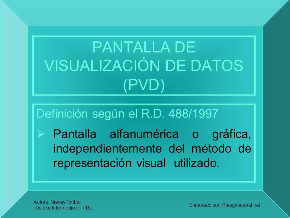 PANTALLA DE VISUALIZACIÓN DE DATOS (PVD)