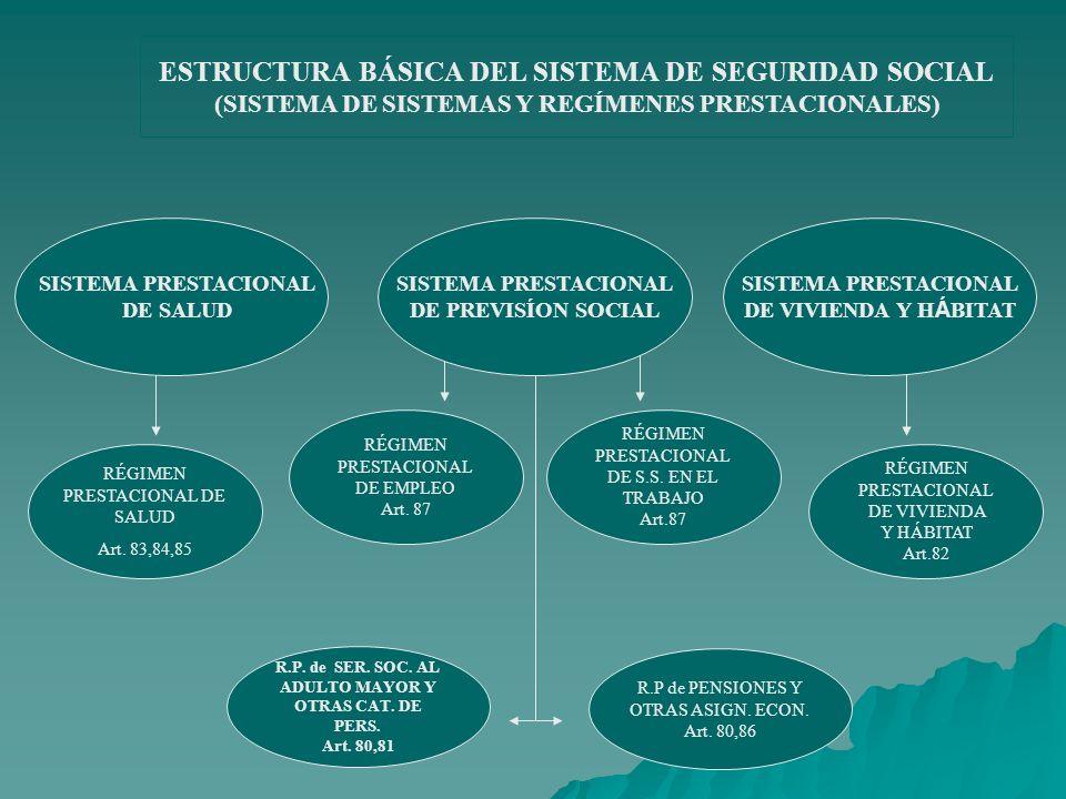 ESTRUCTURA BÁSICA DEL SISTEMA DE SEGURIDAD SOCIAL (SISTEMA DE SISTEMAS Y REGÍMENES PRESTACIONALES)