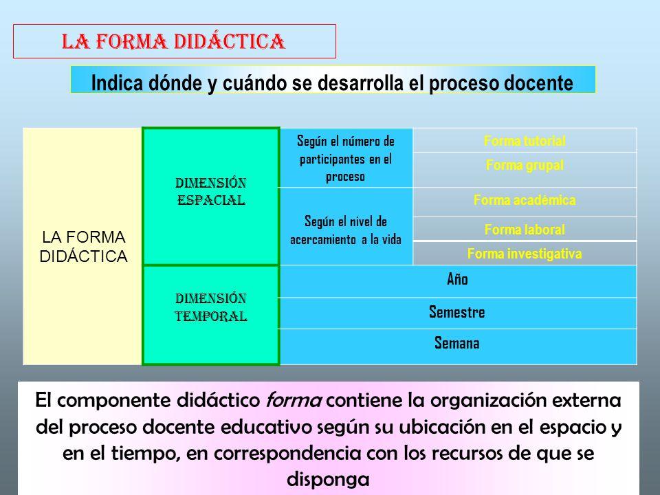 Indica dónde y cuándo se desarrolla el proceso docente