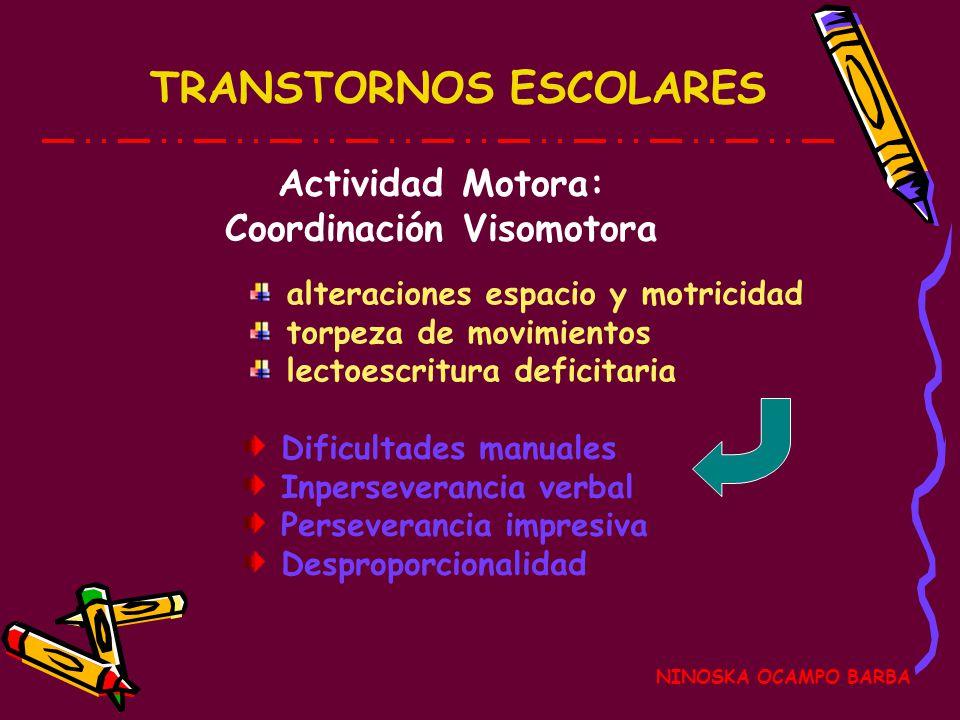 Coordinación Visomotora