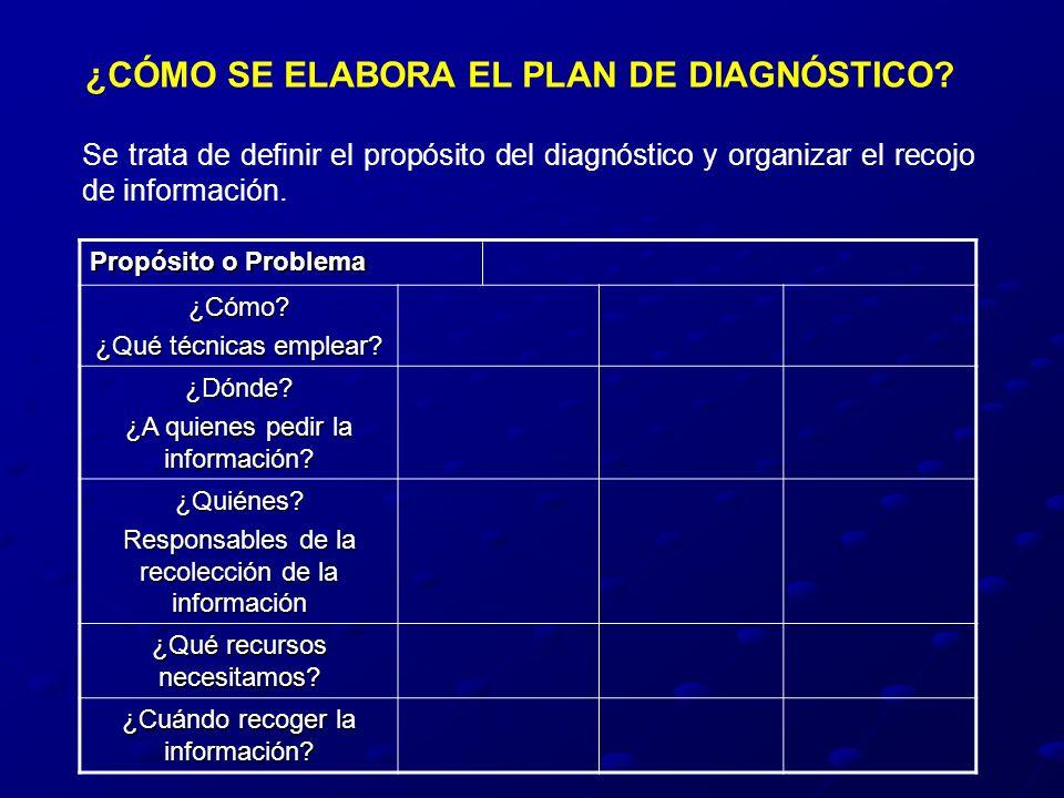 ¿CÓMO SE ELABORA EL PLAN DE DIAGNÓSTICO