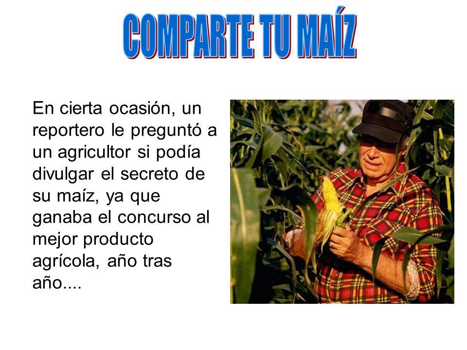 COMPARTE TU MAÍZ