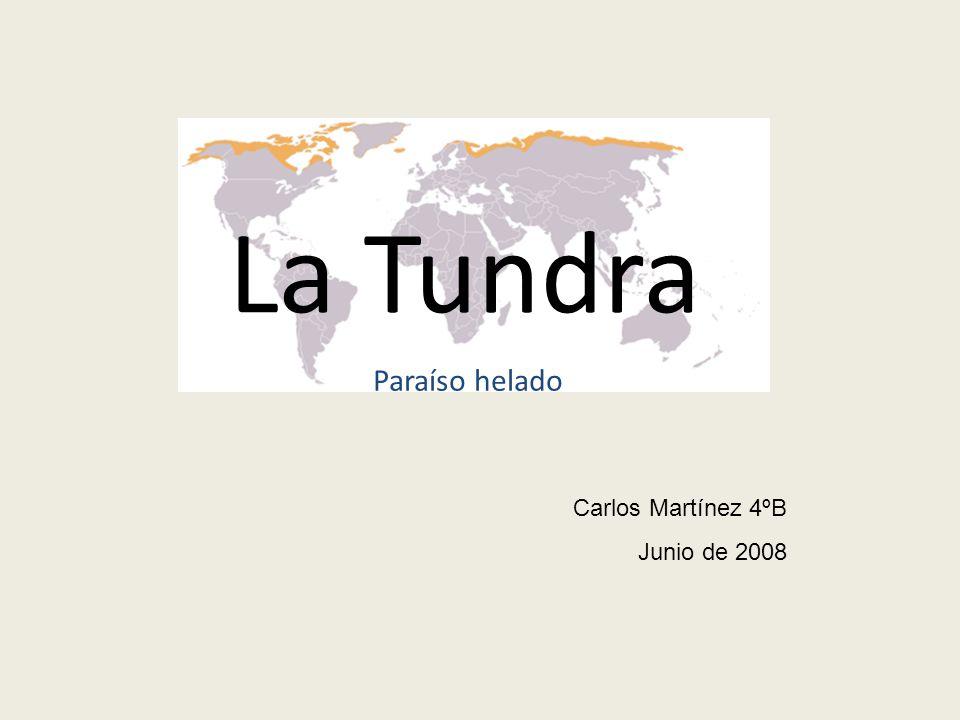 La Tundra Paraíso helado Carlos Martínez 4ºB Junio de 2008