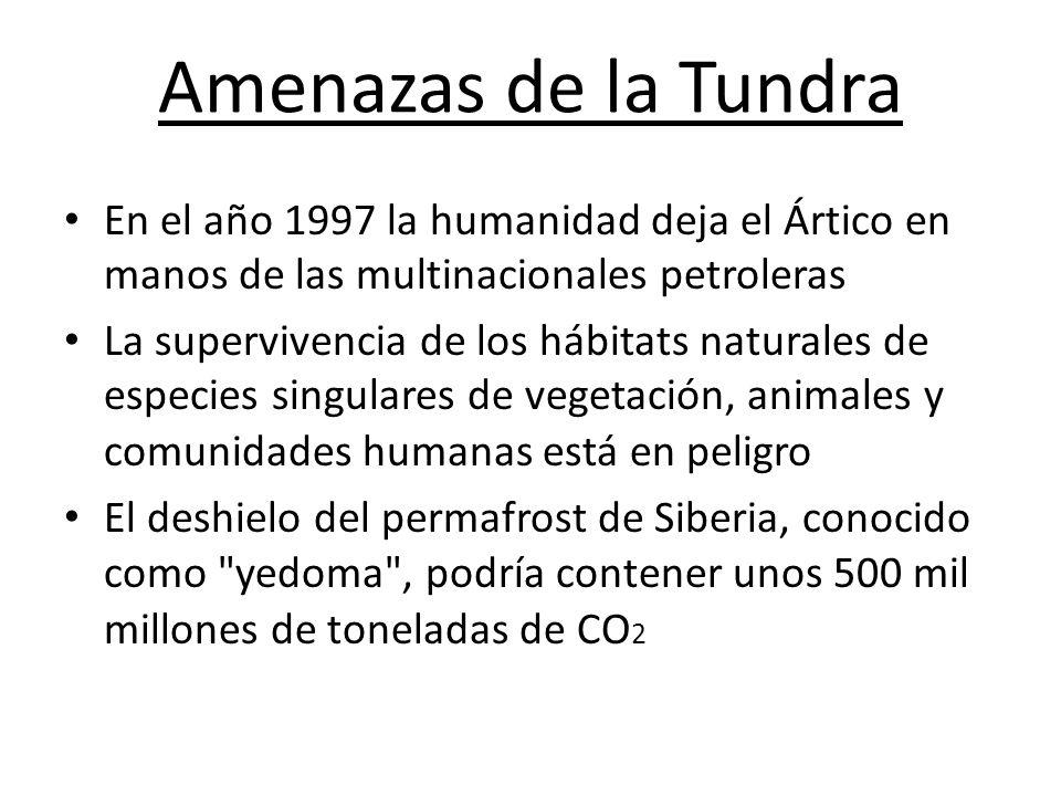 Amenazas de la Tundra En el año 1997 la humanidad deja el Ártico en manos de las multinacionales petroleras.