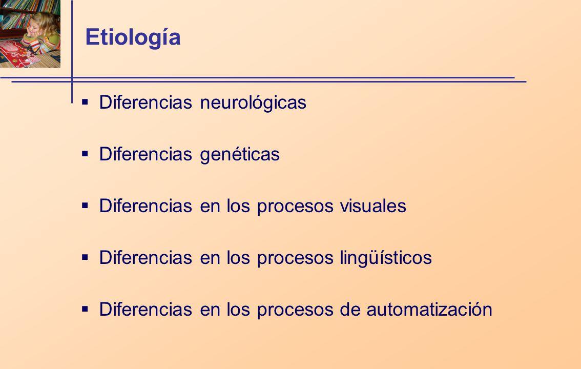 Etiología Diferencias neurológicas Diferencias genéticas