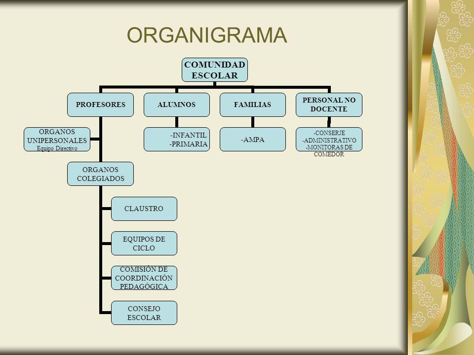 ORGANIGRAMA 5