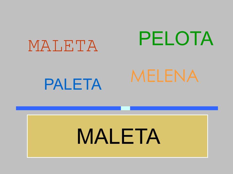 PELOTA MALETA MELENA PALETA MALETA