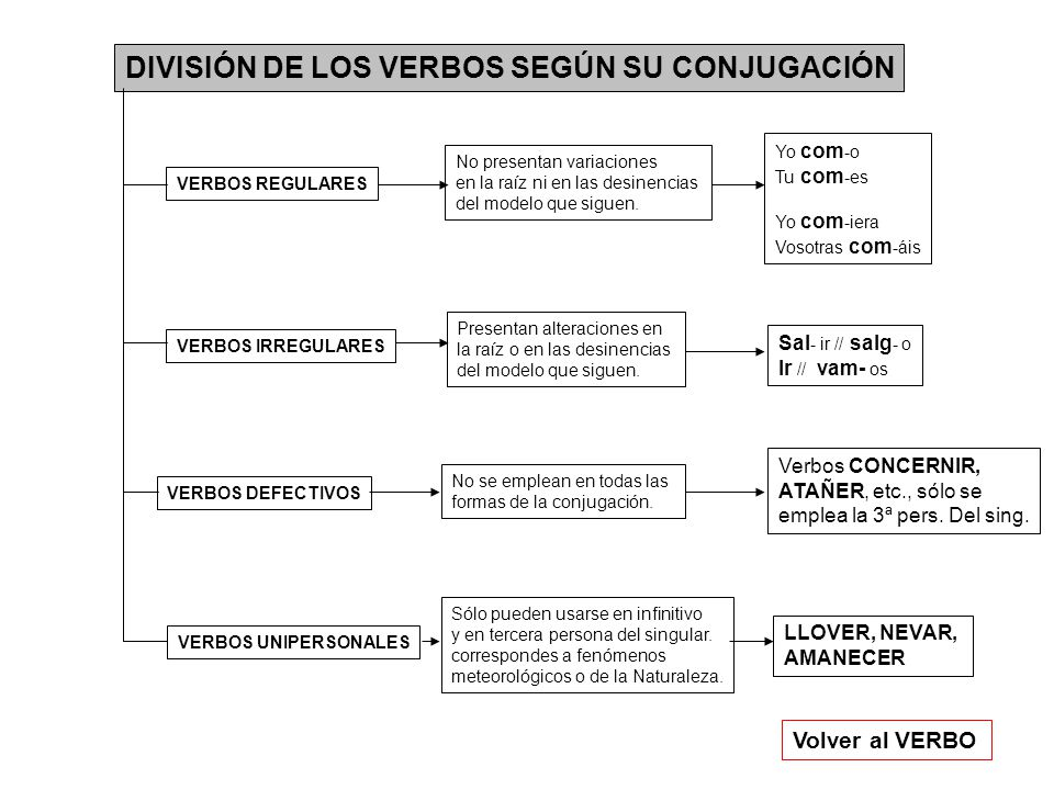 DIVISIÓN DE LOS VERBOS SEGÚN SU CONJUGACIÓN