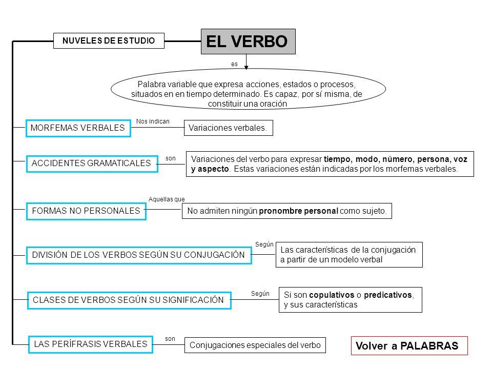 EL VERBO Volver a PALABRAS NUVELES DE ESTUDIO