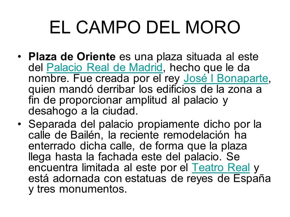 EL CAMPO DEL MORO