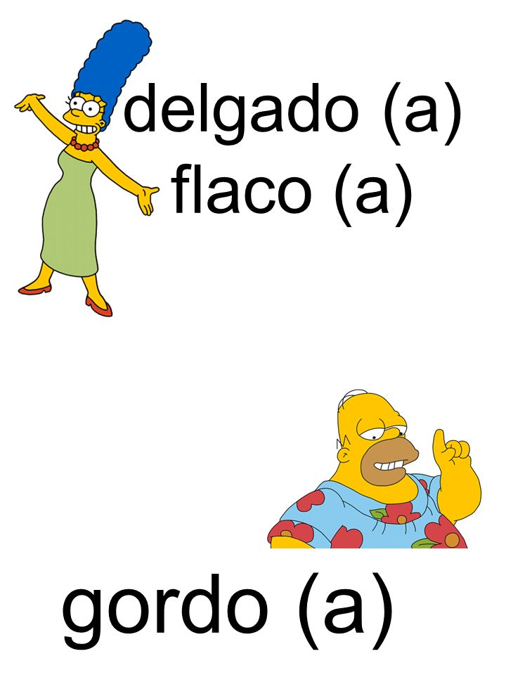 delgado (a) flaco (a) gordo (a)