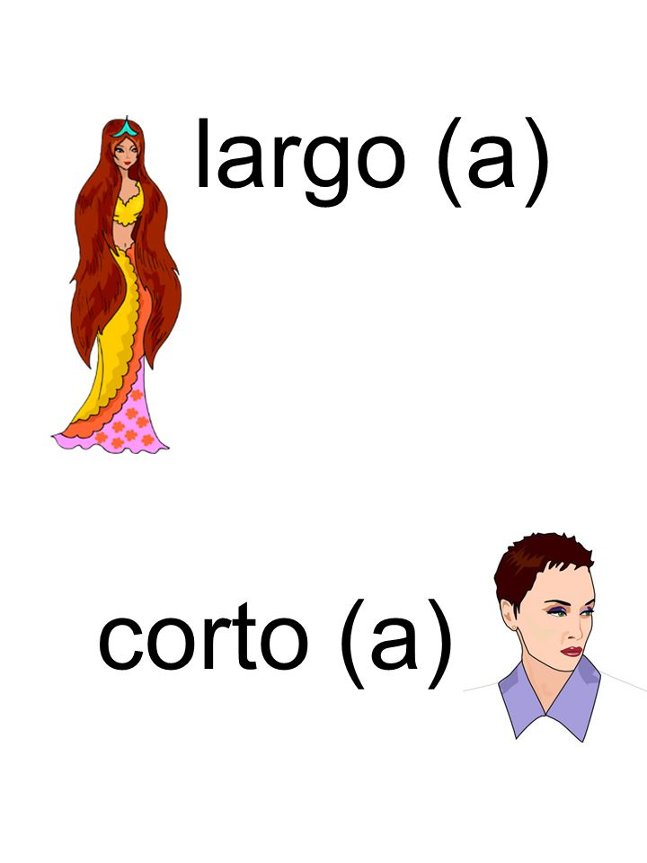 largo (a) corto (a)