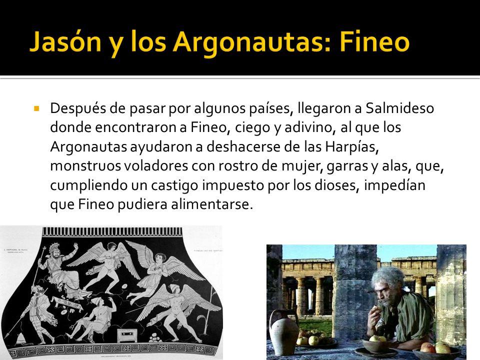 Jasón y los Argonautas: Fineo