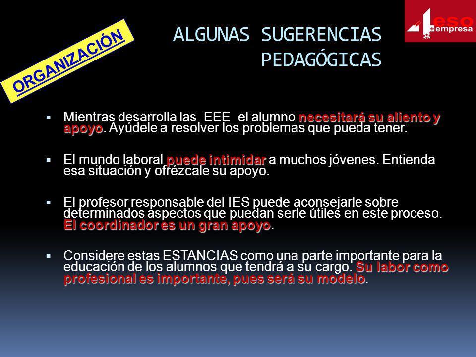 ALGUNAS SUGERENCIAS PEDAGÓGICAS