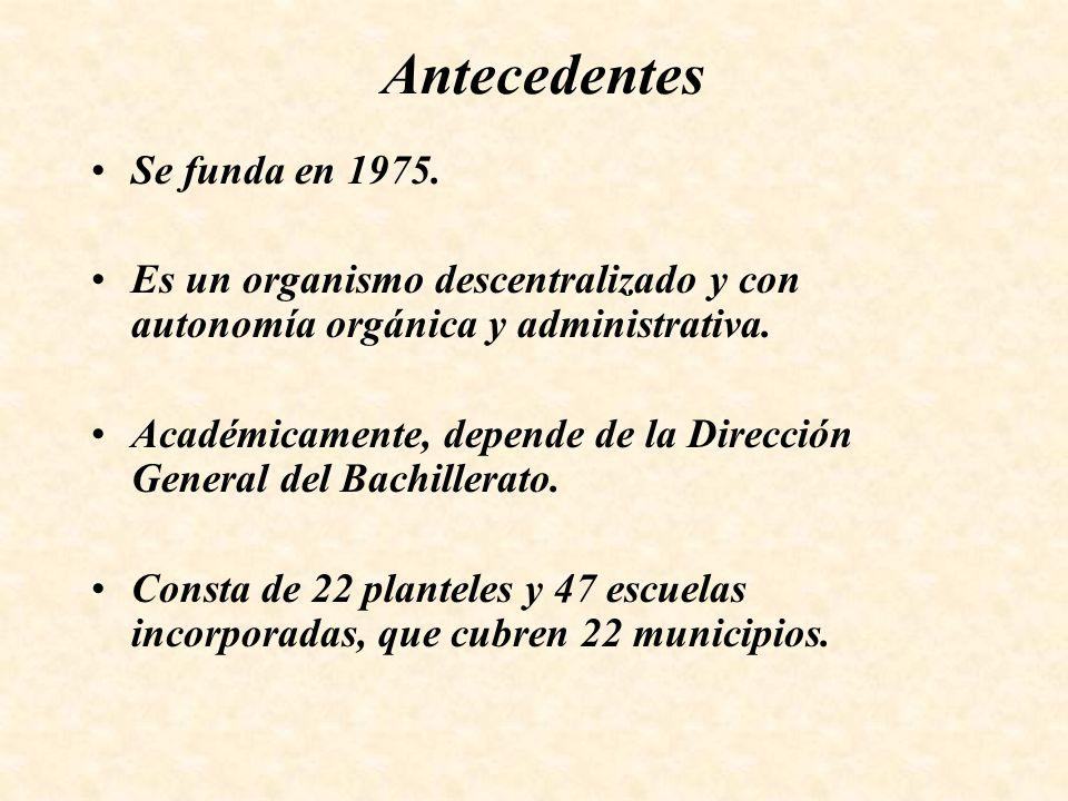 Antecedentes Se funda en 1975.