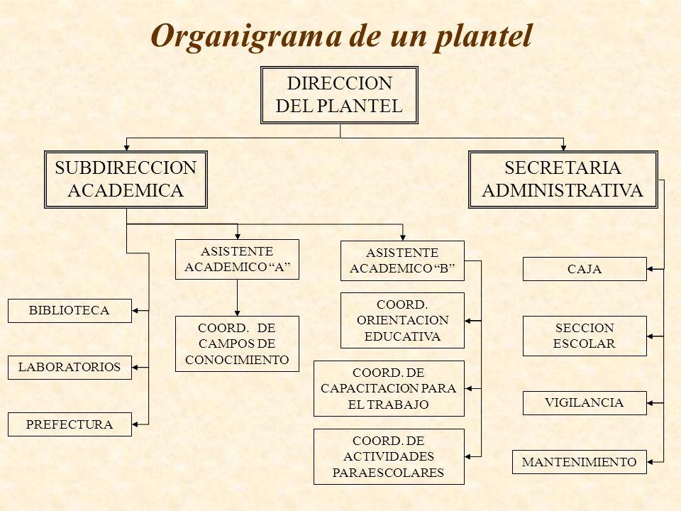 Organigrama de un plantel