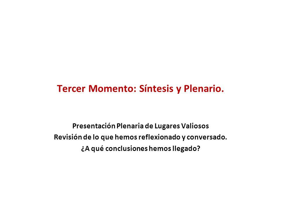 Tercer Momento: Síntesis y Plenario.