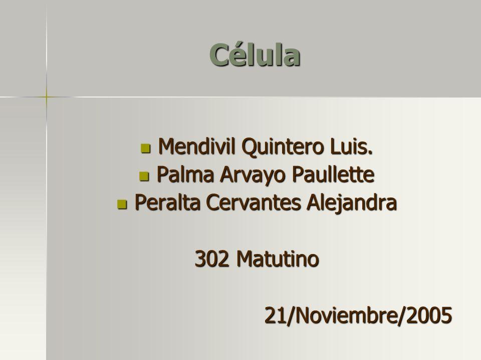 Célula Mendivil Quintero Luis. Palma Arvayo Paullette