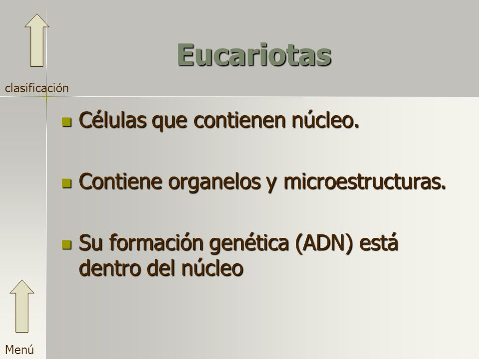 Eucariotas Células que contienen núcleo.
