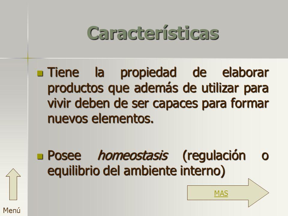 Características Tiene la propiedad de elaborar productos que además de utilizar para vivir deben de ser capaces para formar nuevos elementos.