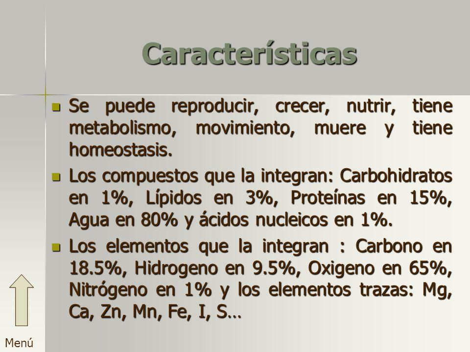 Características Se puede reproducir, crecer, nutrir, tiene metabolismo, movimiento, muere y tiene homeostasis.