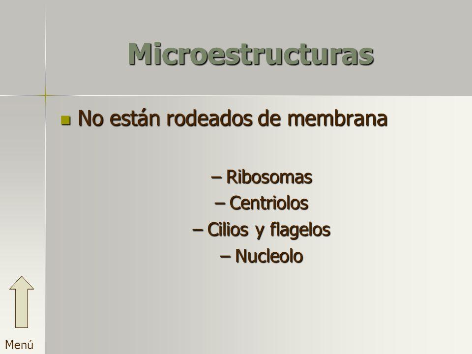 Microestructuras No están rodeados de membrana Ribosomas Centriolos